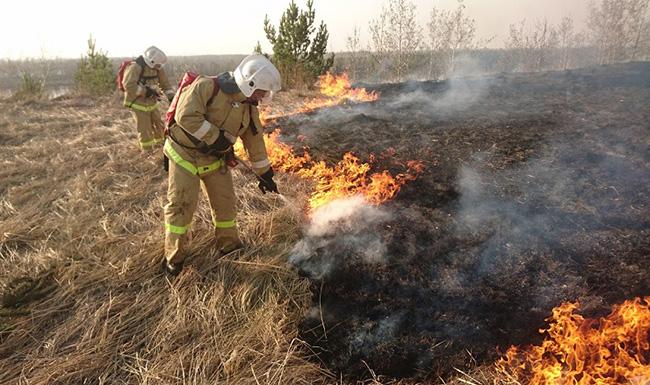 Пожары из-за пала травы