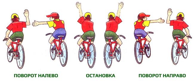 За рулем велосипеда